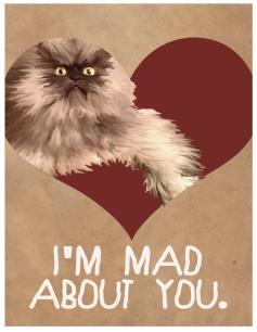 Angry Cat Love Valentine